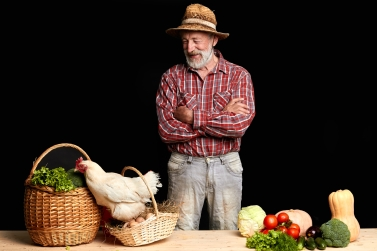 Mature farmer giggling and looking at hen jumping out of basket with fresh eggs